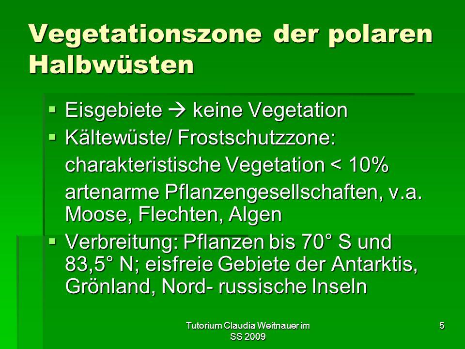 Vegetationszone der polaren Halbwüsten