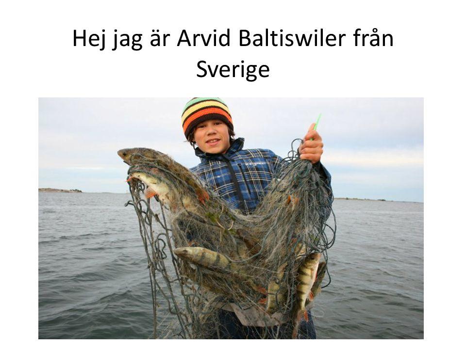 Hej jag är Arvid Baltiswiler från Sverige