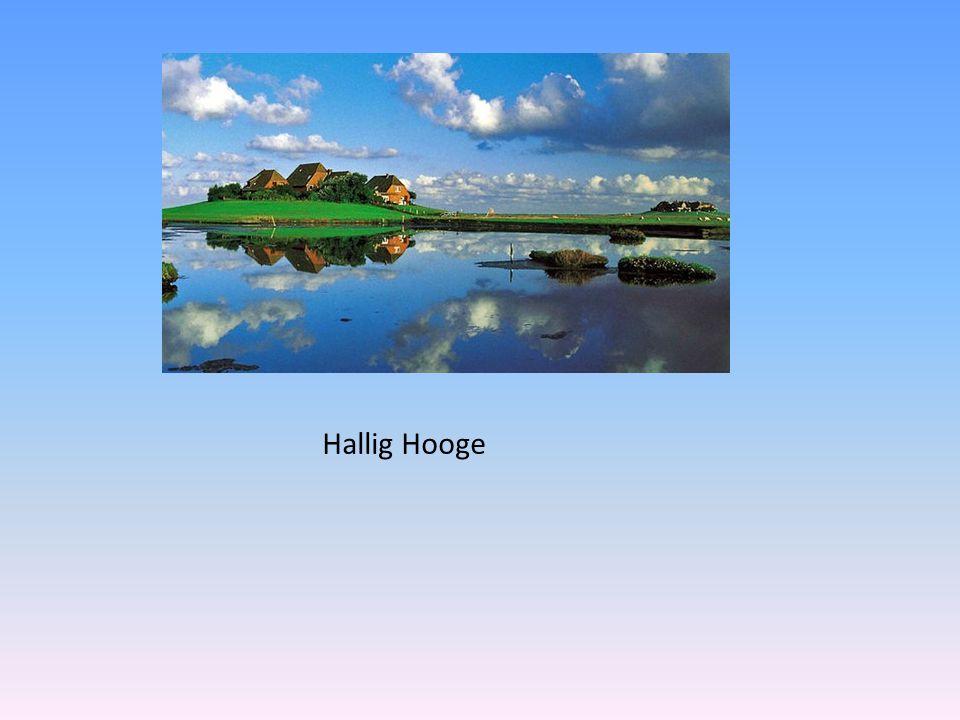 Hallig Hooge