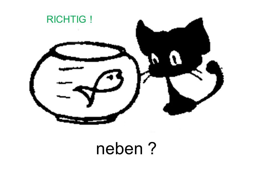 RICHTIG ! neben