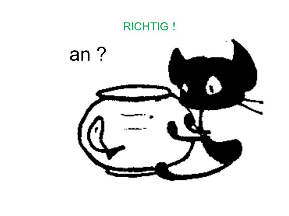 RICHTIG ! an
