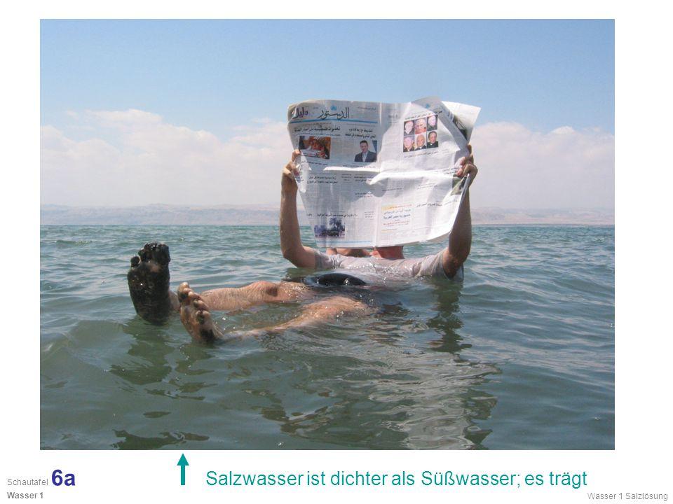 Salzwasser ist dichter als Süßwasser; es trägt