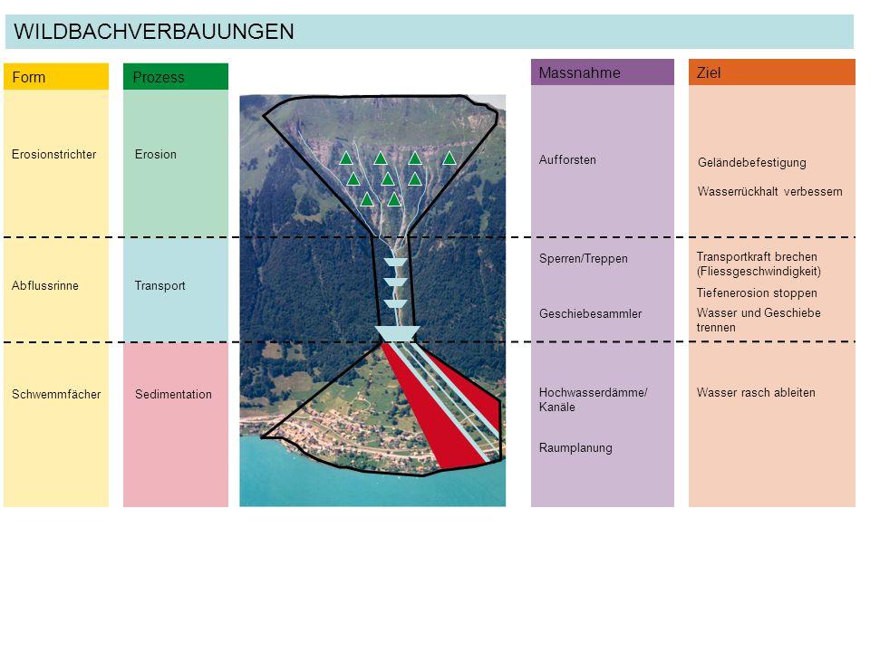 WILDBACHVERBAUUNGEN Form Prozess Massnahme Ziel Erosionstrichter