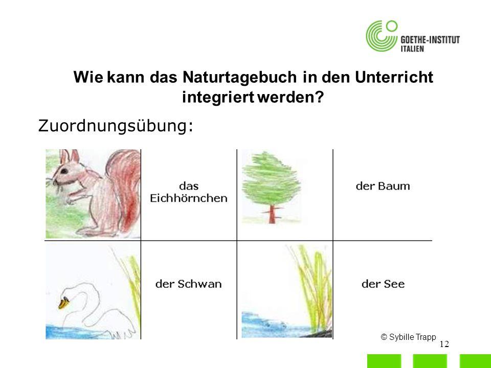bäume thema im biountericht