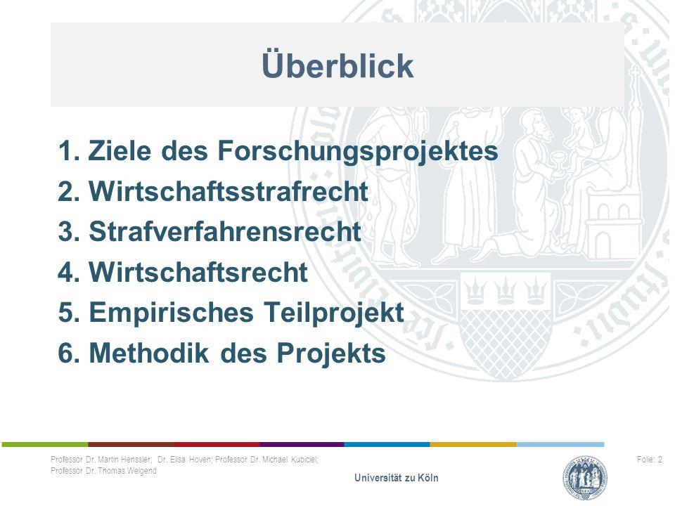 Überblick 1. Ziele des Forschungsprojektes 2. Wirtschaftsstrafrecht