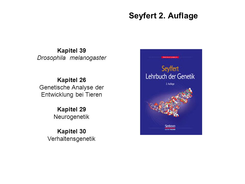 Seyfert 2. Auflage