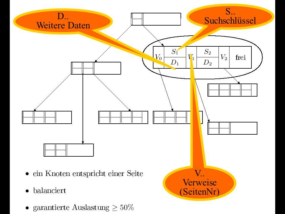 S.. Suchschlüssel D.. Weitere Daten V.. Verweise (SeitenNr)