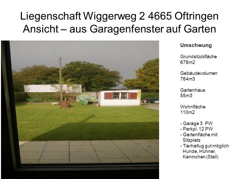 Liegenschaft Wiggerweg 2 4665 Oftringen Ansicht – aus Garagenfenster auf Garten