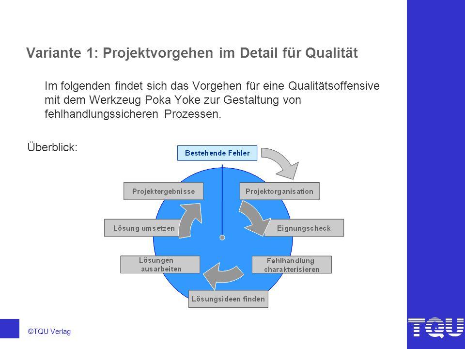 Variante 1: Projektvorgehen im Detail für Qualität