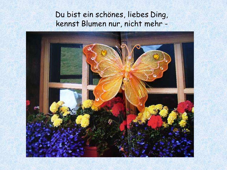 Du bist ein schönes, liebes Ding, kennst Blumen nur, nicht mehr -