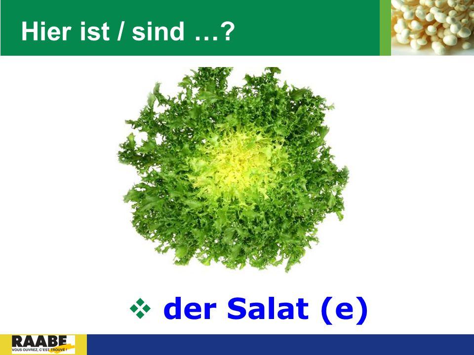 Hier ist / sind … der Salat (e)
