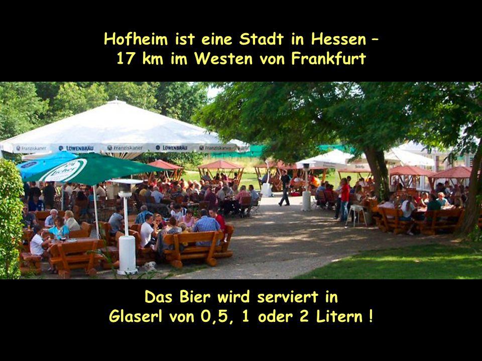 Hofheim ist eine Stadt in Hessen – 17 km im Westen von Frankfurt