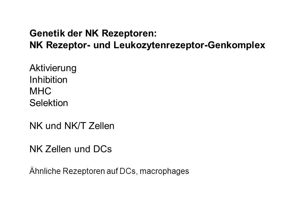 Genetik der NK Rezeptoren: