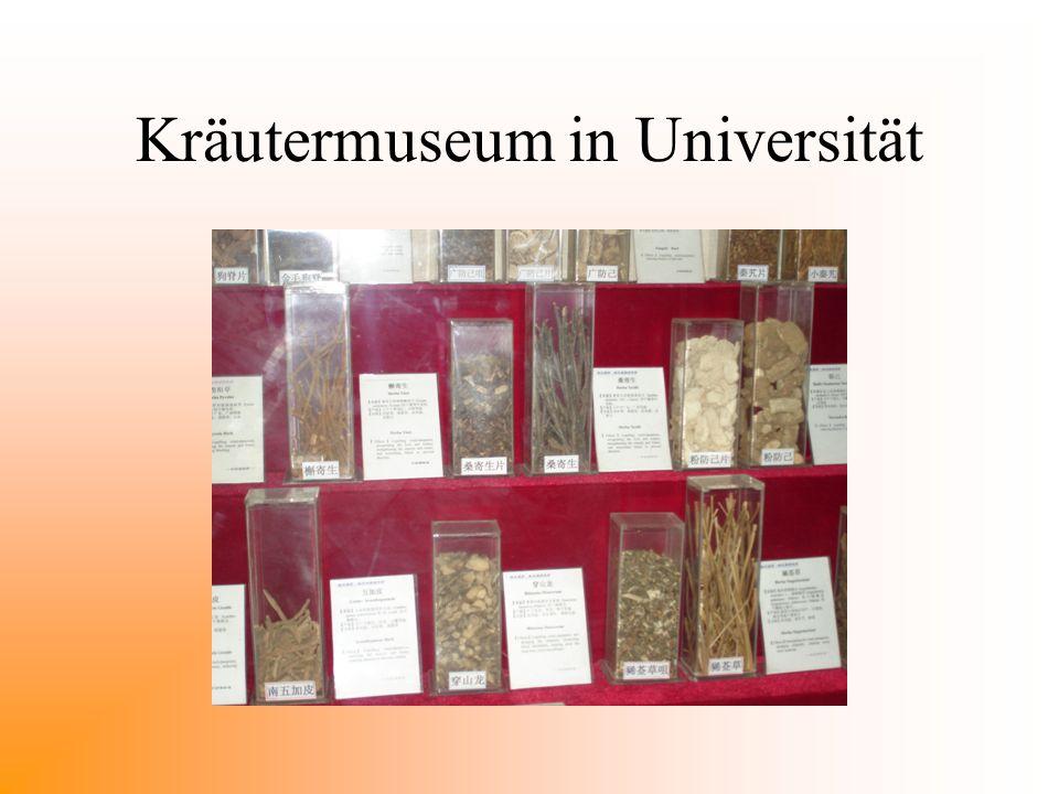 Kräutermuseum in Universität