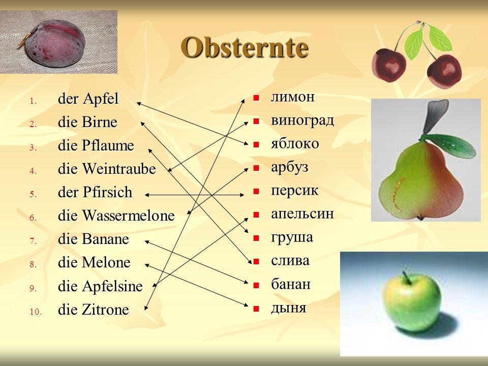 Obsternte лимон der Apfel виноград die Birne яблоко die Pflaume арбуз