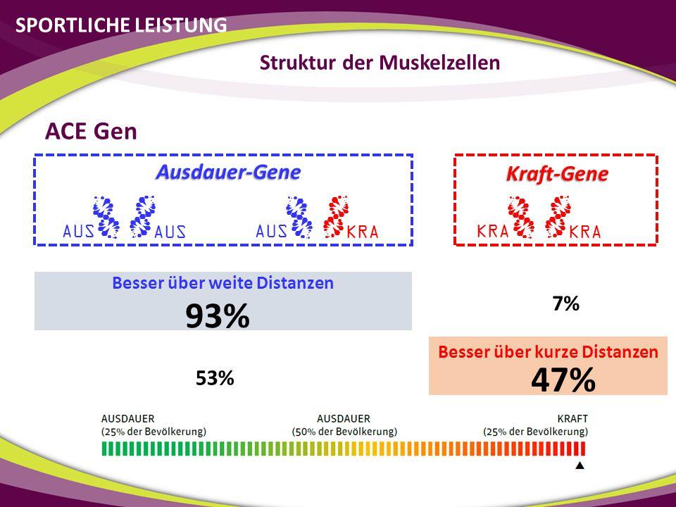 93% 47% ACE Gen SPORTLICHE LEISTUNG Struktur der Muskelzellen
