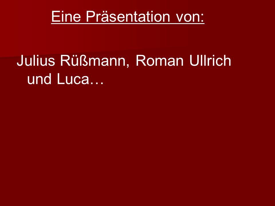 Julius Rüßmann, Roman Ullrich und Luca…