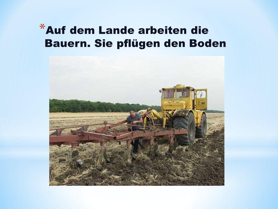 Auf dem Lande arbeiten die Bauern. Sie pflügen den Boden