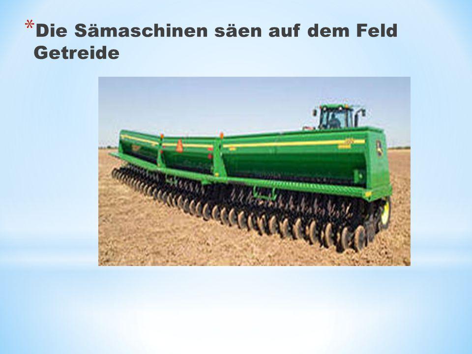 Die Sämaschinen säen auf dem Feld Getreide