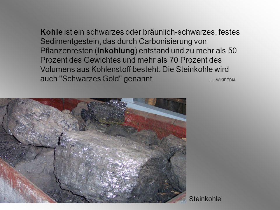 Kohle ist ein schwarzes oder bräunlich-schwarzes, festes Sedimentgestein, das durch Carbonisierung von Pflanzenresten (Inkohlung) entstand und zu mehr als 50 Prozent des Gewichtes und mehr als 70 Prozent des Volumens aus Kohlenstoff besteht. Die Steinkohle wird auch Schwarzes Gold genannt. …WIKIPEDIA