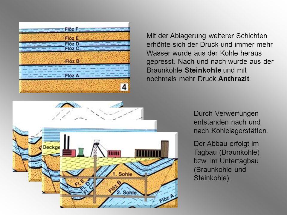 Mit der Ablagerung weiterer Schichten erhöhte sich der Druck und immer mehr Wasser wurde aus der Kohle heraus gepresst. Nach und nach wurde aus der Braunkohle Steinkohle und mit nochmals mehr Druck Anthrazit.