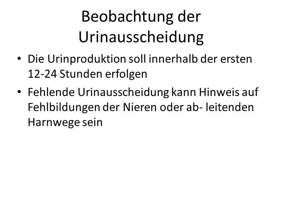 Atemberaubend Ich Möchte Ein Schulberater Sein Ideen - Anatomie und ...