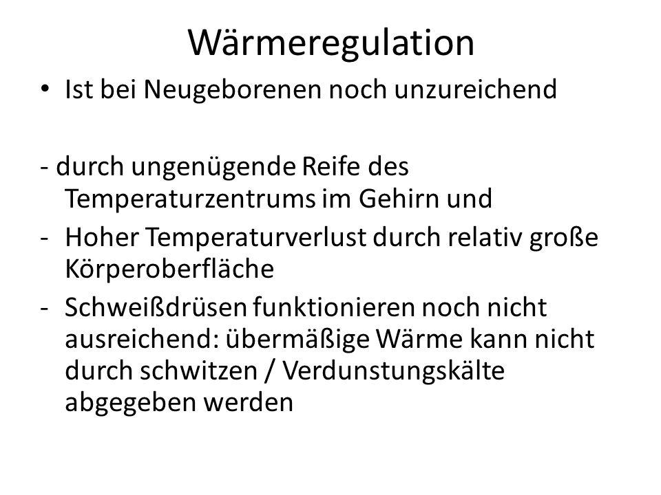 Wärmeregulation Ist bei Neugeborenen noch unzureichend
