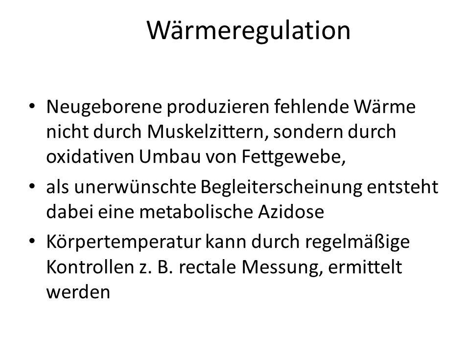 Wärmeregulation Neugeborene produzieren fehlende Wärme nicht durch Muskelzittern, sondern durch oxidativen Umbau von Fettgewebe,