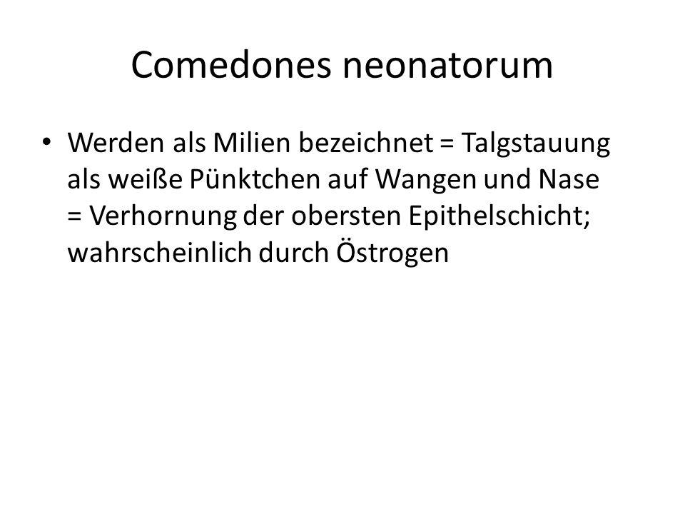 Comedones neonatorum