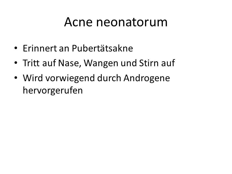 Acne neonatorum Erinnert an Pubertätsakne