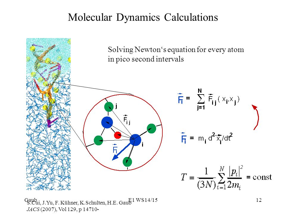 Molecular Dynamics Calculations