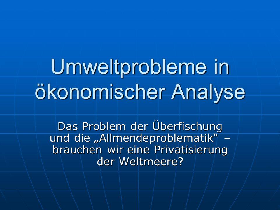 Umweltprobleme in ökonomischer Analyse