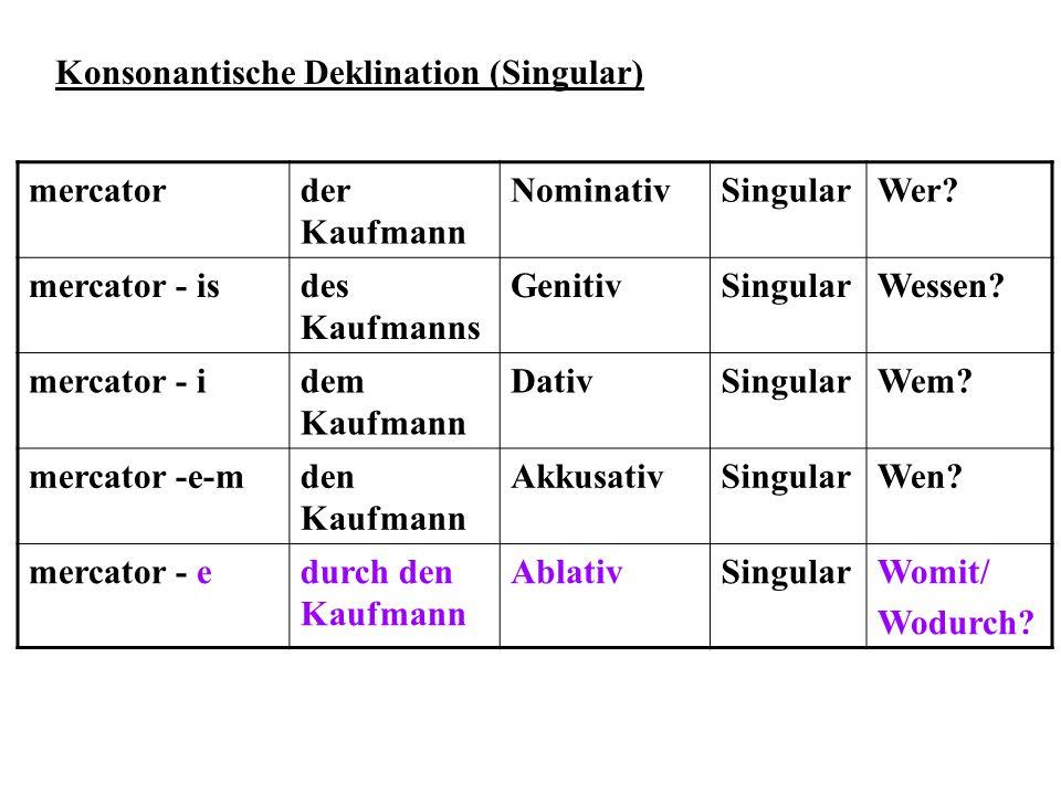 Konsonantische Deklination (Singular)