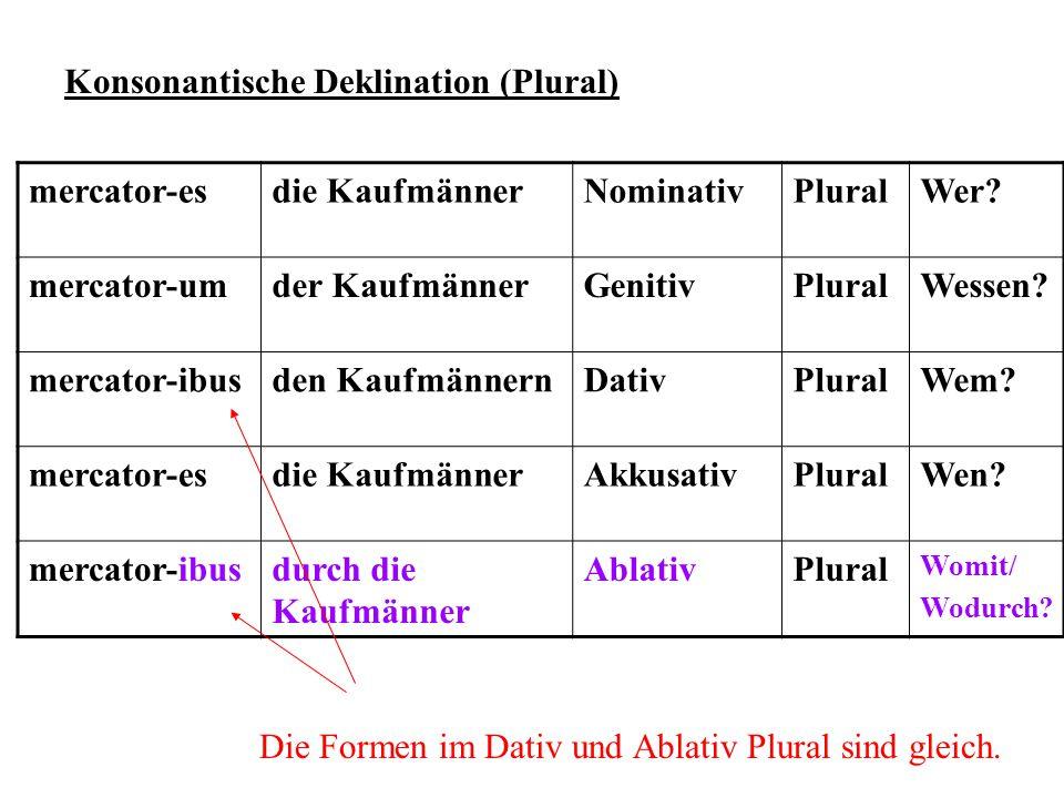 Konsonantische Deklination (Plural) mercator-es die Kaufmänner