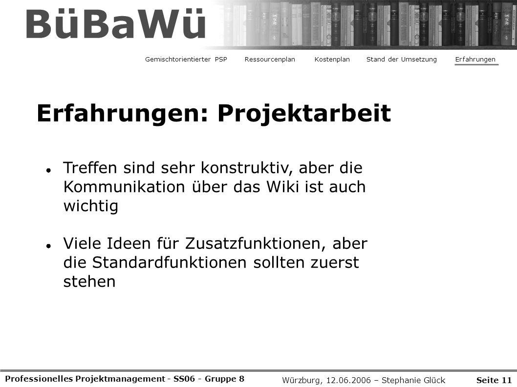 BüBaWü Erfahrungen: Projektarbeit
