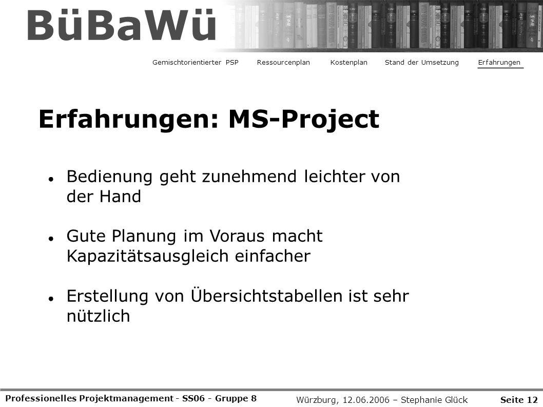 BüBaWü Erfahrungen: MS-Project