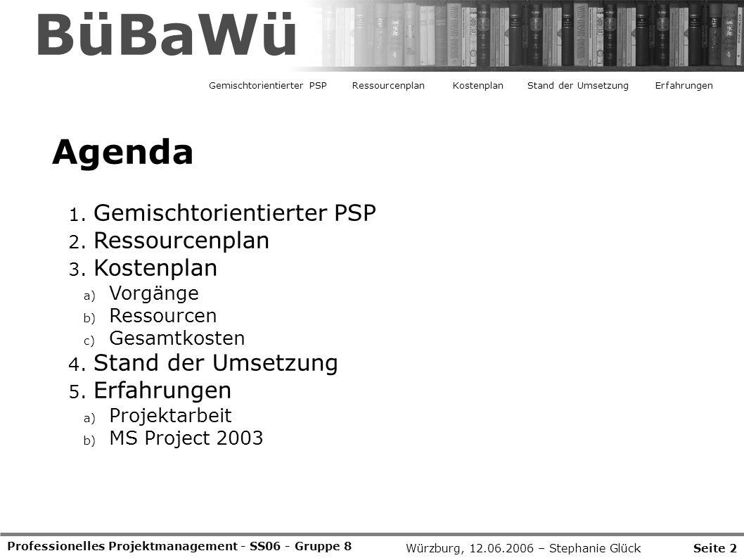 BüBaWü Agenda Gemischtorientierter PSP Ressourcenplan Kostenplan
