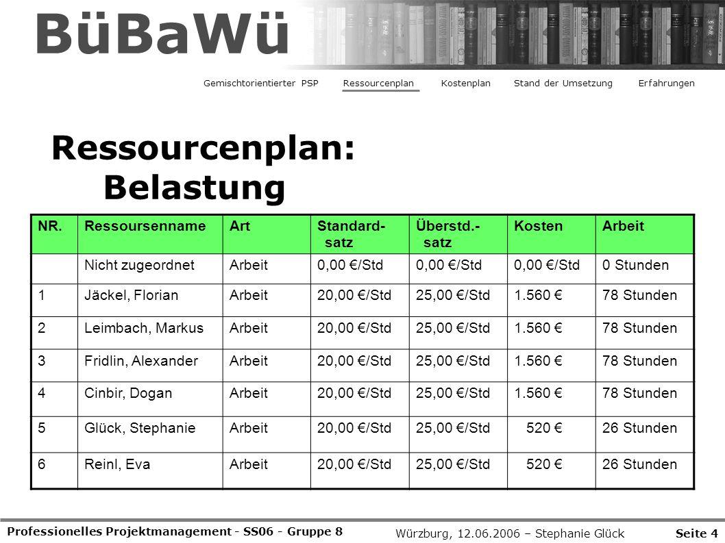 BüBaWü Ressourcenplan: Belastung NR. Ressoursenname Art Standard- satz