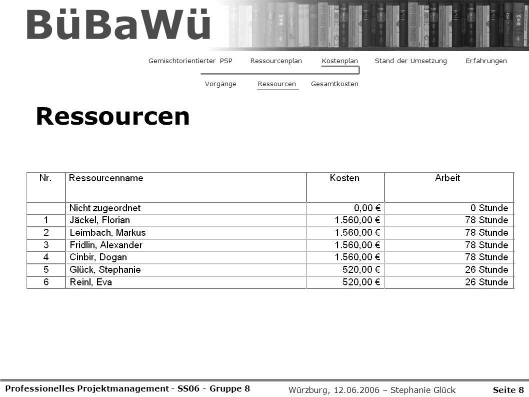 BüBaWü Ressourcen Professionelles Projektmanagement - SS06 - Gruppe 8