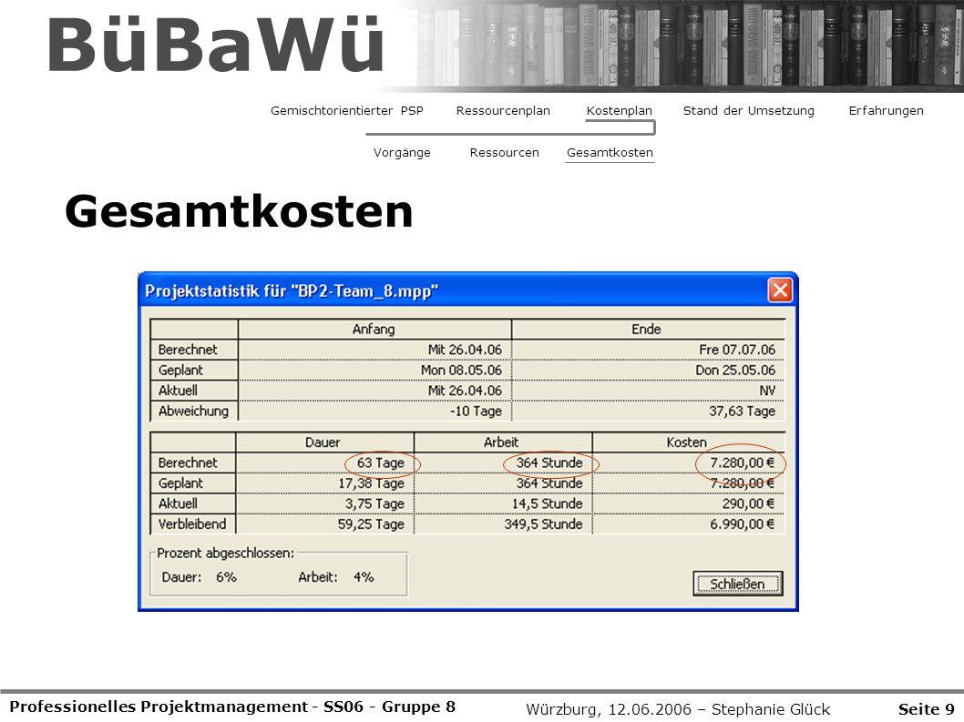 BüBaWü Gemischtorientierter PSP. Ressourcenplan. Kostenplan. Stand der Umsetzung. Erfahrungen. Vorgänge.
