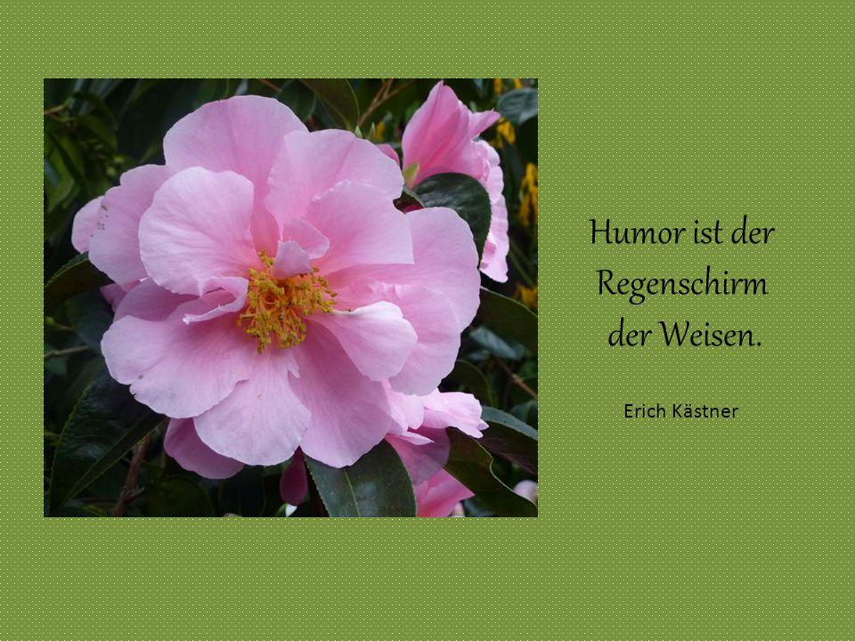 Humor ist der Regenschirm der Weisen. Erich Kästner Erich Kästner