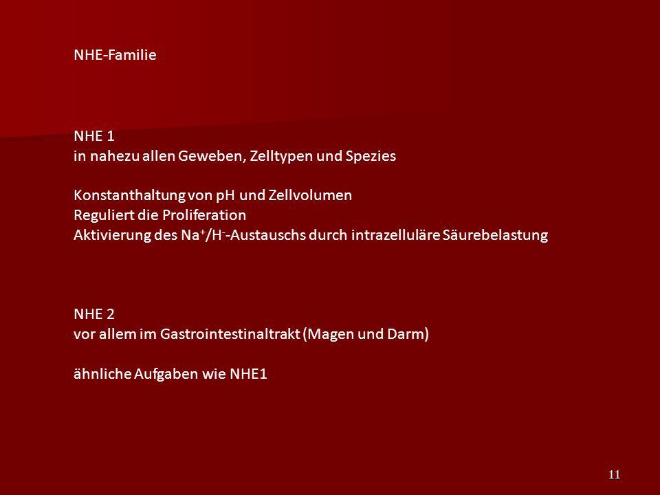 NHE-Familie NHE 1. in nahezu allen Geweben, Zelltypen und Spezies. Konstanthaltung von pH und Zellvolumen.
