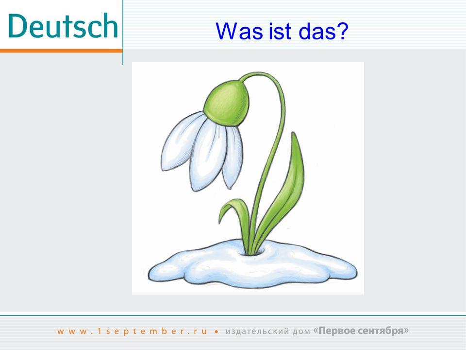 Was ist das Das Bild ist entnommen aus: www.shutterstock.com