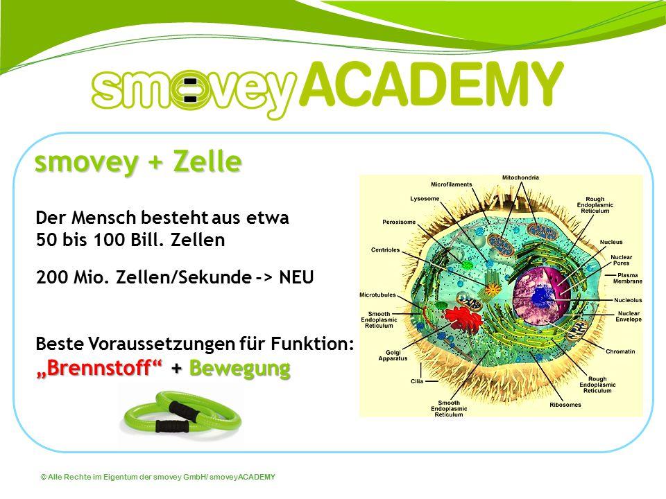 smovey + Zelle Der Mensch besteht aus etwa 50 bis 100 Bill. Zellen