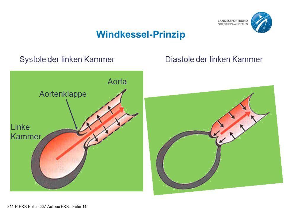 Windkessel-Prinzip Linke Kammer Aortenklappe Aorta