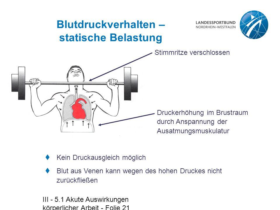 Blutdruckverhalten – statische Belastung