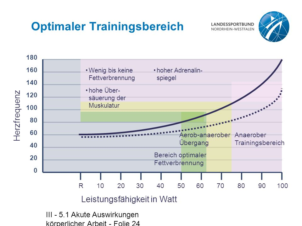 Optimaler Trainingsbereich