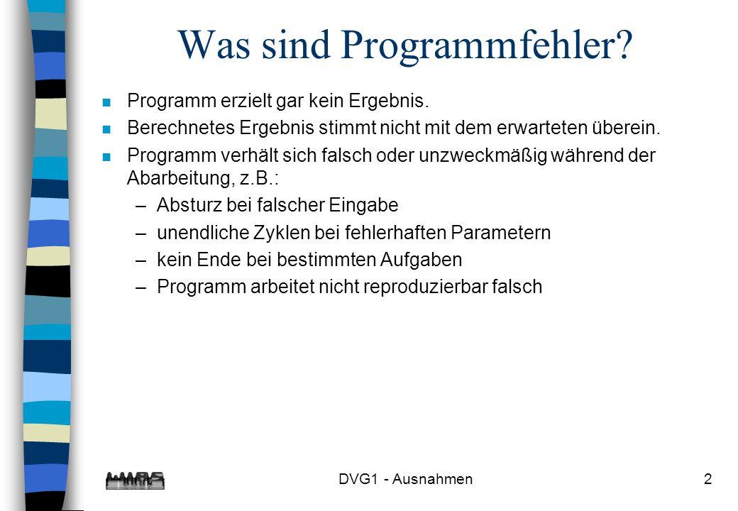 Was sind Programmfehler