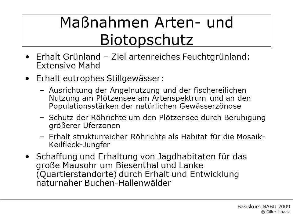 Maßnahmen Arten- und Biotopschutz
