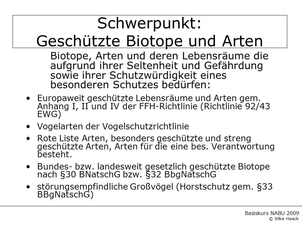 Schwerpunkt: Geschützte Biotope und Arten